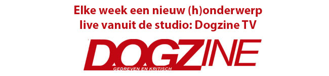 dogzine tv